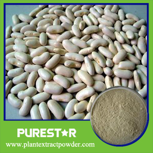 White Kidney Bean Extract,Phaseolin